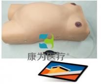 """KANGWAY""移动交互式产前护理模型系统"