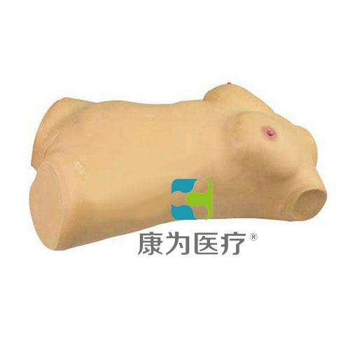 """""""康为医疗""""乳房检查操作模型人,高级乳房检查全身模型,乳房病变识别模型,乳腺脓肿切开术模型"""