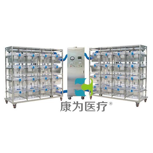 """""""康为医疗""""普通型豚鼠IVC笼具ACG2121"""