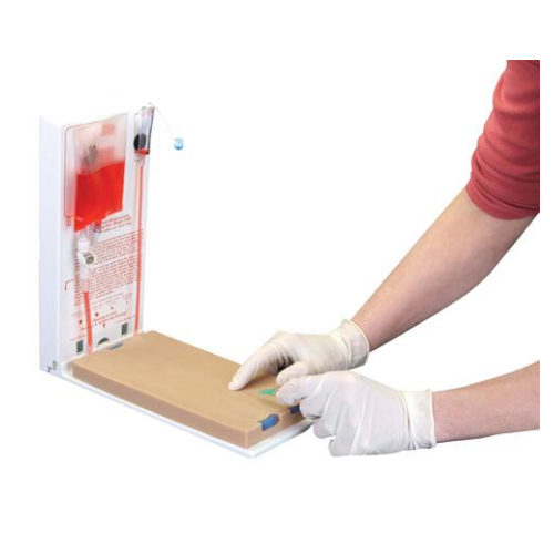 德国3B Scientific®高级四静脉穿刺训练模型,DERMALIKE II™不含乳胶