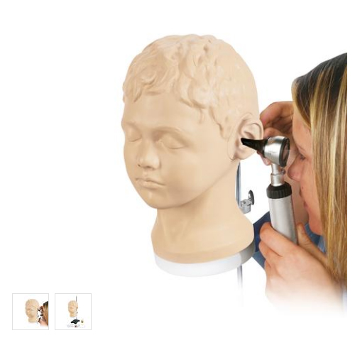 德国3B Scientific®耳部诊断以及程序性培训模型