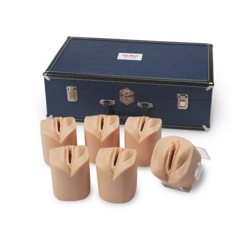 德国3B Scientific®宫颈扩张及宫颈管消失模拟装置