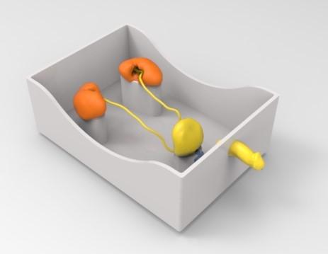 泌尿系统介入模拟器-肾软镜介入模拟系统,肾结石软镜手术模拟装置