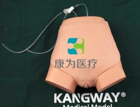 """""""康为医疗""""女性膀胱造瘘操作模型"""