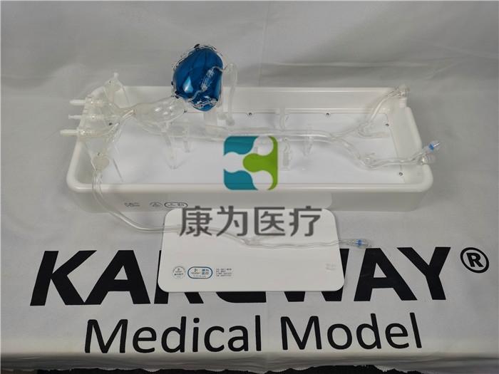 冠脉微创手术介入模拟训练模型系统