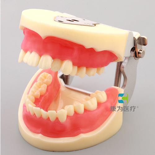 口腔医学 Dental