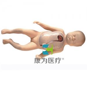 """""""康为医疗""""高级新生儿外周中心静脉插管模型"""