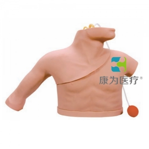 """""""康为医疗""""中心静脉穿刺插管训练模型,LF01012U中心静脉穿刺置管操作模型"""