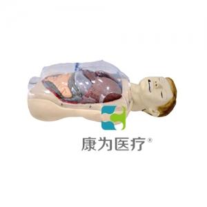 """""""康为医疗""""三腔二囊管训练模型"""