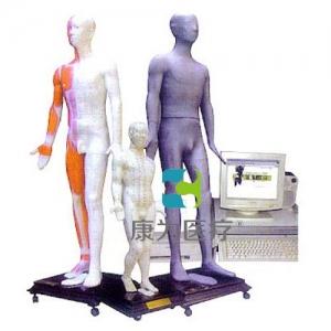 """""""康为医疗""""多媒体针灸人体穴位发光模型(光电感应)"""