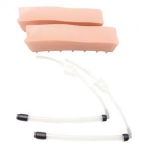 德国3B Scientific®老年人LOR(无阻力)腰椎插件(2),用于硬膜外脊椎注射训练模型