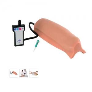 德国3B Scientific®带报警装置的肌肉注射模拟器-大腿