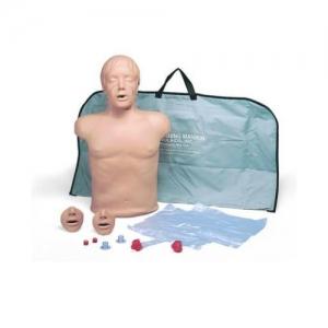 德国3B Scientific®心肺复苏(CPR)躯干模型