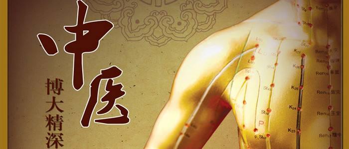 中医教学模型